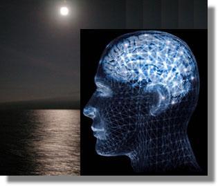 LQ - Getaran Otak