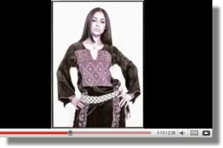 Arab Hip Hop - Shadia Mansour