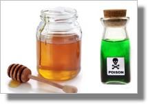 madu dan racun